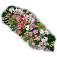 coussin blanc et rose