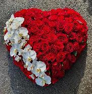 Coeur roses XXL