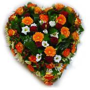 coeur germinis et roses