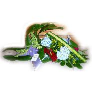 coussin hortensias