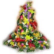 devant cercueil multicolore